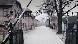 Sfilmowali teren Auschwitz z drona. To co widać sprawia, że ciarki przechodzą pr