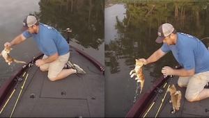 Dwóch mężczyzn wybrało się na ryby, a skończyli łowiąc kociąta.