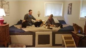 Zbudowali naprawdę wielkie łóżko, bo... zwierzęta chciały spać z nimi.