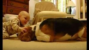 Rodzice w końcu postanowili pozwolić psu zbliżyć się do ich kilkumiesięcznej cór