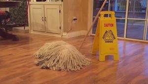 Wygląda jak mop porzucony na środku podłogi, ale tylko poczekajcie, aż ktoś zapu