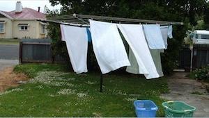 Powiesili  pranie w ogrodzie. Nie spodziewali się, że usłyszą coś takiego od swo