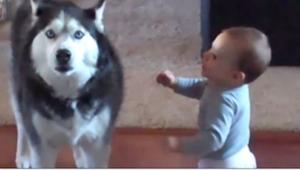 Mama przyłapała swoje dziecko na rozmowie z psem... Musicie to usłyszeć!