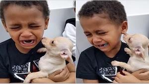 Nie uwierzycie, dlaczego ten chłopiec rozpłakał się, gdy mama kupiła mu pieska.