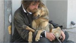 17 psów, które wiernie trwają przy swoich właścicielach nawet w czarnej godzinie
