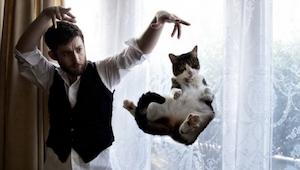 Zobacz galerię 20 niezwykłych zdjęć kotów. Zdjęcie nr 8 jest świetne!