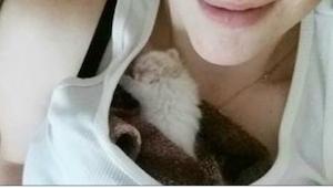 Znalazła porzuconego kotka w sklepie spożywczym! Zobaczcie, jak wygląda teraz!