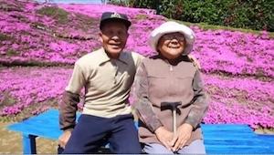 Zasadził tysiące kwiatów po to, by jego niewidoma żona mogła je wąchać... Wzrusz