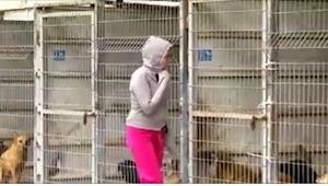 Ta kobieta nie mogła zdecydować się, którego psa adoptować, więc ostatecznie zro