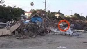 Gdy znaleźli na wysypisku śmieci tego psa, nie mogli uwierzyć, że wciąż żyje! Zo