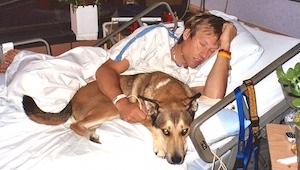 Lekarze kazali psu opuścić szpitalny pokój pana, wtedy stało się coś niespodziew