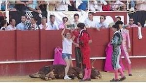 Ta kobieta zdumiała wszystkich stając w obronie umierającego byka! A potem mężcz