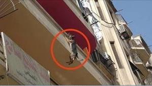 Ten pies zwisał z balkonu przez 5 godzin. Ta historia mrozi krew w żyłach!