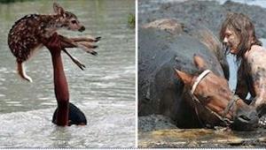 20 osób, które zrobiły niesamowite rzeczy, by uratować zwierzęta! Brawo!