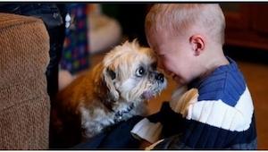 Myślisz, że dzieci nie powinny mieć zwierząt? No to spójrz na te zdjęcia!