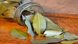 Spal w domu liście laurowe, a już po 10 minutach zobaczysz, co się stanie!