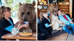 Ta para adoptowała trzymiesięcznego nieźdzwiedzia. Zobaczcie go 23 lata później!