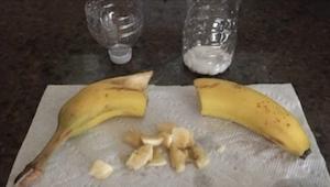 Pokroił banana i wsadził go do pustej butelki. Powód dla którego to zrobił jest