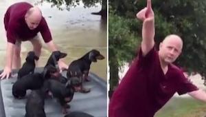 Ten mężczyzna w bardzo kreatywny sposób ocalił z powodzi miot szczeniaczków.