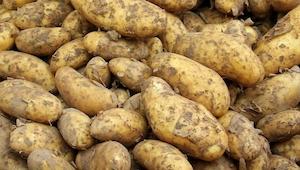 Ojciec poszedł do piwnicy po ziemniaki, gdy nie wrócił poszła jego żona, a potem