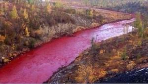 Przerażeni mieszkańcy nie mogli uwierzyć w to, co stało się z rzeką. To jakiś ho