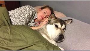 Nie pozwalasz swojemu psu spać z Tobą w łóżku? Być może po tym artykule będziesz