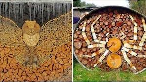 Gdy żony zapędziły ich do układania drewna na opał, nie spodziewały się TEGO!