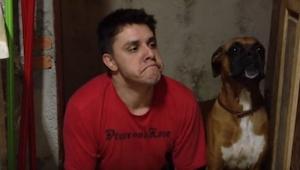 Jego właściciel postanowił sprawdzić, jak to byłoby być psem... Ubaw gwarantowan