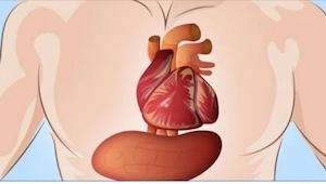 Znając objawy zawału serca, można sprawić, że... nawet do niego nie dojdzie!