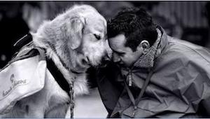 To, co ten pies robi dla swojego człowieka, to najlepsze, co mogło go spotkać. I