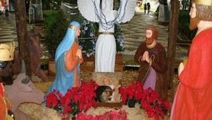Przechodnie zatrzymali się, żeby obejrzeć szopkę świąteczną. To co zobaczyli ich