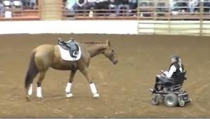 Koń podchodzi do kobiety na wózku - chwilę później widownia jest zachwycona!