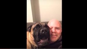 To, co robi ten pies, żeby uciszyć swojego pana, jest tak zabawne, że nie przest