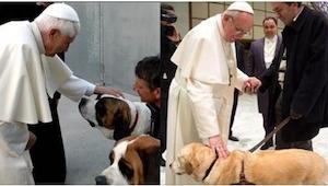 Papież chciał pocieszyć małego chłopca, a przy okazji wywołał sensację... Zobacz