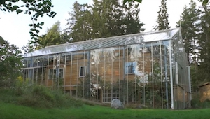 Kiedy zobaczyłam ten dom zabudowany szkłem nie byłam pewna na co patrzę - dopier