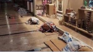 Zobaczyła kilkanaście psów śpiących w centrum handlowym... Po prostu musiała zro