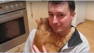 To, co robi ten kot, przeczy wszystkim mitom na temat tych zwierząt!