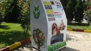 Zwierzęta ustawiają się wokół pojemnika do recyklingu. Kiedy zobaczyłam dlaczego