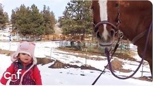 3 latka złapała za lejce i zaczęła prowadzić konia. Chwilę później nie mogłam uw