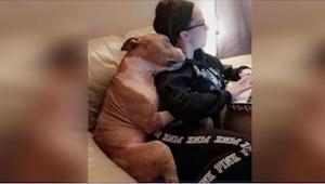Pies przygarnięty ze schroniska mieszka z nią od 2 tygodni i wciąż nie chce prze