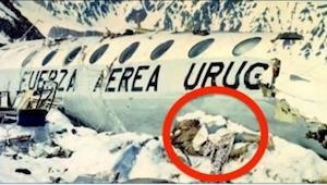 72 dni po wypadku służby odkryły straszny sekret ukryty wysoko w górach. Kiedy u