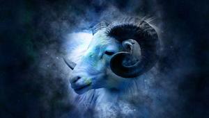 Jeśli znacie zodiakalne Barany, musicie to przeczytać! Po prostu trzeba się nauc