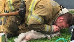Kobieta krzyczy podczas gdy strażak próbuje ratować jej psa. Po 20 minutach zdar