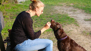 Nie domyślicie się co oznacza potrzeba mówienia do swojego zwierzaka!