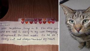 Mężczyzna nie mógł uwierzyć własnym oczom, gdy za obrożą swojego kota znalazł ta