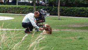 Codziennie biegając przez park widzi mężczyznę, który pcha wózek dla dziecka. Gd