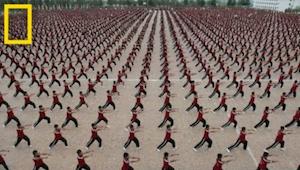 W Świątyni Shaolin Kung Fu uczy się 36 tysięcy dzieci. Zobaczcie jak wygląda ich