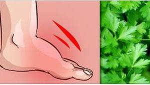 Chcesz się pozbyć opuchlizny z nóg? Idź do ogródka po jedną roślinę.