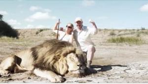 Zabili lwa i uśmiechnięci pozowali do pamiątkowego zdjęcia. To, co pojawiło się