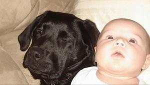 Siostra ostrzegała ją, żeby nie kupowała psa, jeśli będzie mieć dziecko. 10 lat